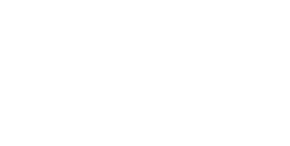 The Palace Group logo